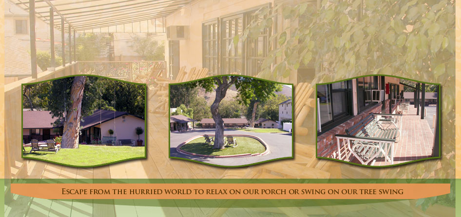 Peach tree inn san luis obispo hotel for Pet friendly hotels near hearst castle
